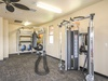 Air-conditioned Workout Area
