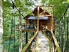 Treehouse 4 Exterior Web