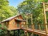Cricket Hill Treehouse D