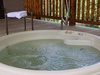 Water Lily Hot Tub 2.jpg
