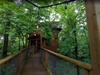 treehouse-1-exterior.jpg