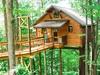 tree-house-5-exterior.jpg