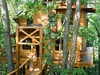 treehouse-3-exterior-vert.jpg