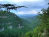 Close to Cloudland Canyon State Park
