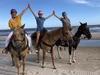 Horseback Riding CSB