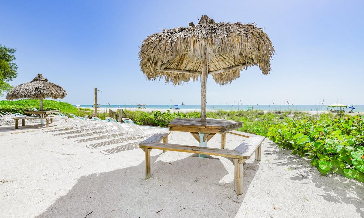 Beachfront Coconuts #109 - AMI Locals