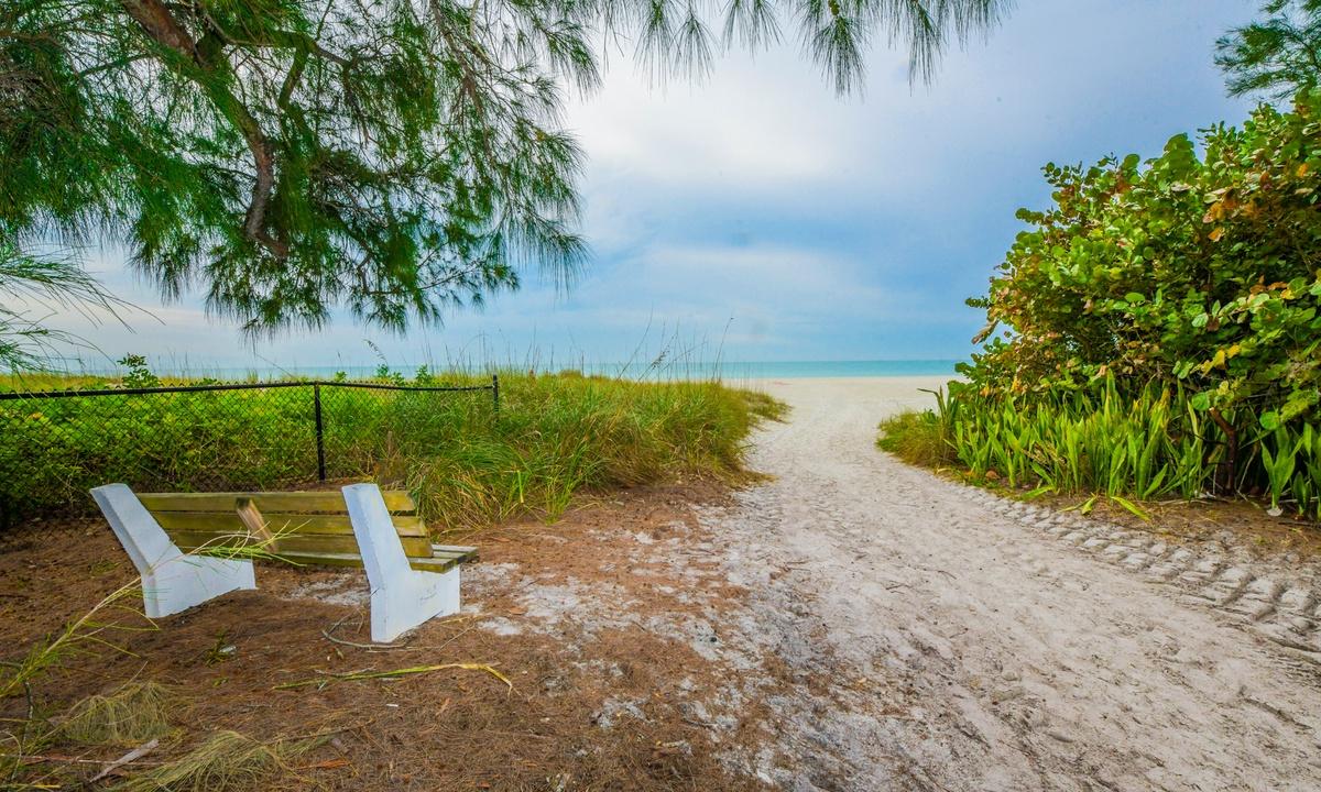 Gulf Pearl - AMI Locals