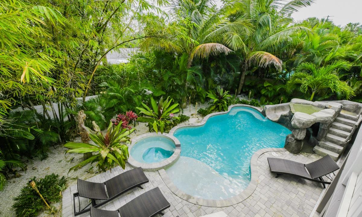 Pineapple Paradise - AMI Locals