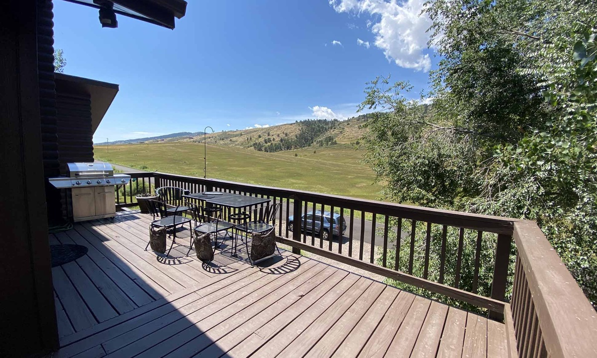 Outdoor grill and deck