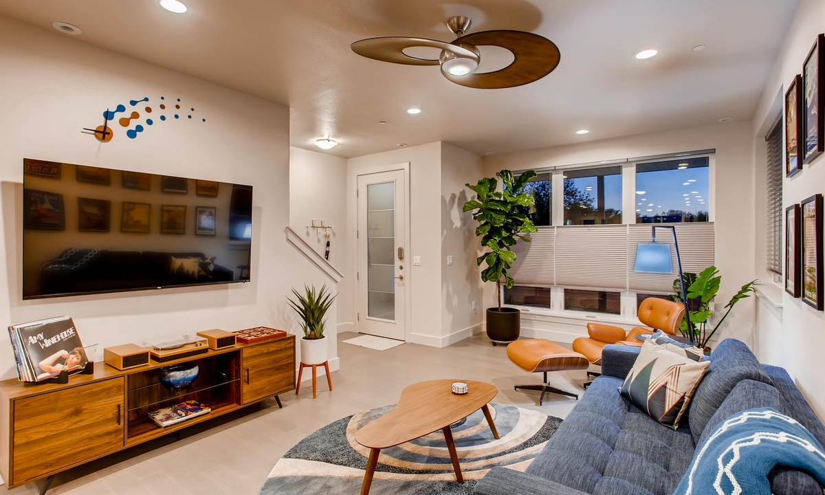 Living room with pull out sofa