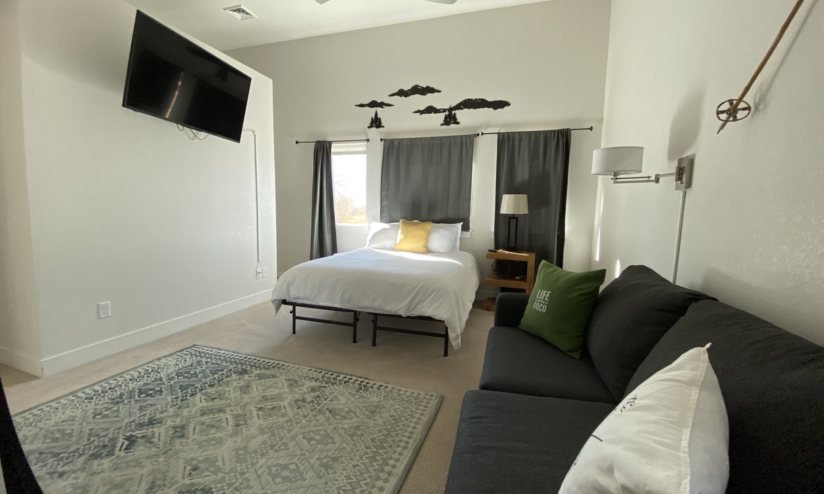 Master bedroom with pull out sofa and TV