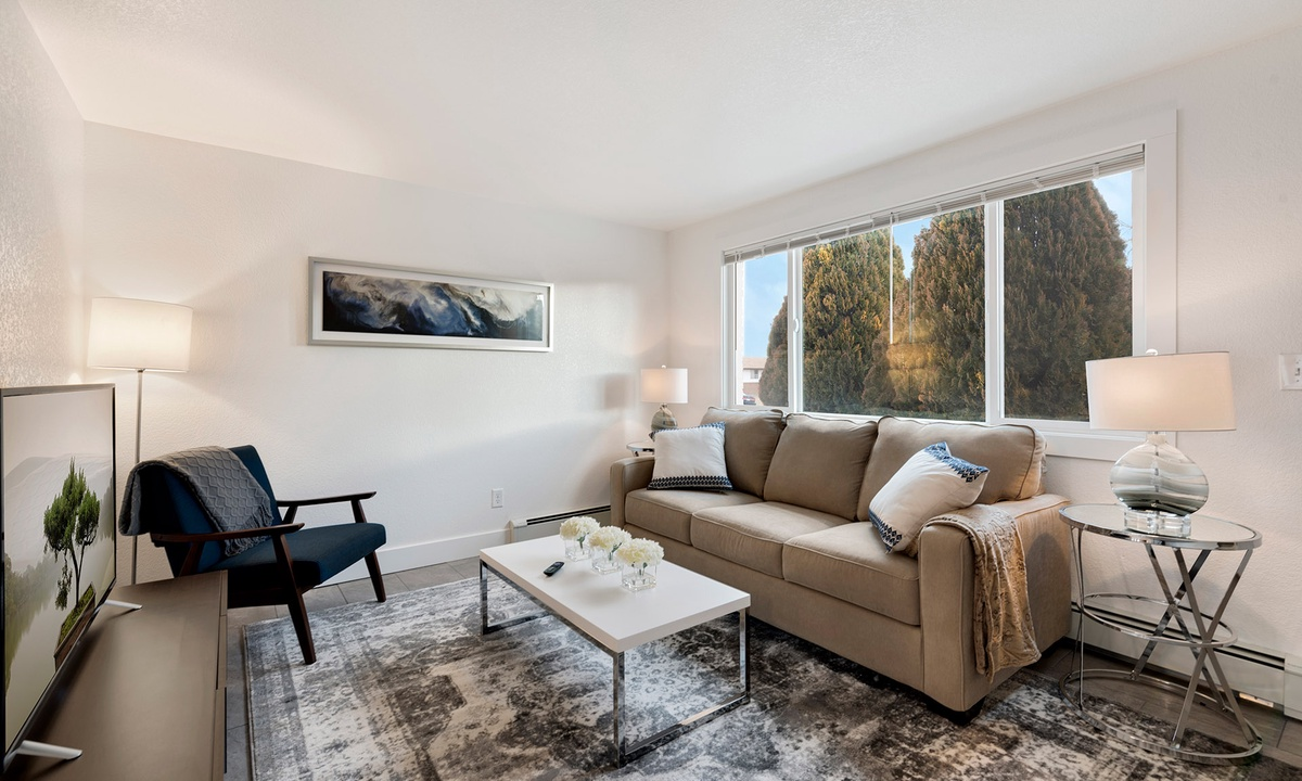 Living room with Smart TV and pull out sofa