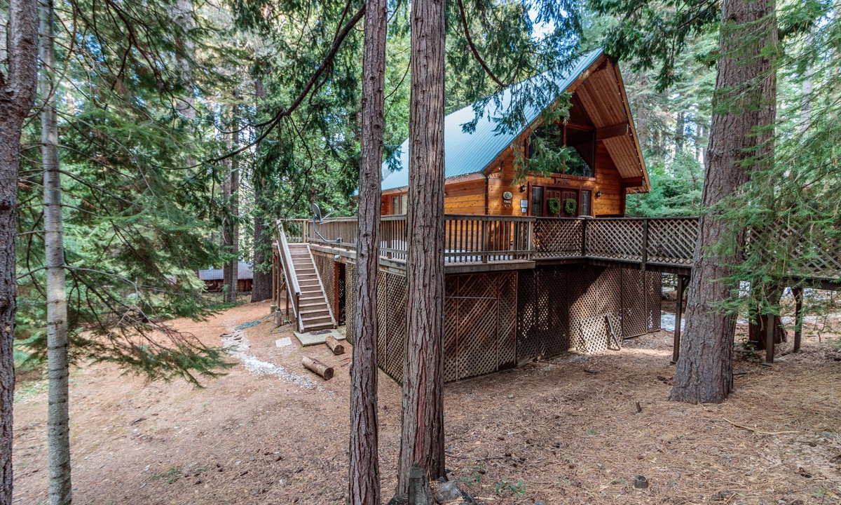 Sorenson Cabin in the Woods