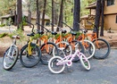 Bikes-Cypress 10
