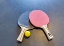 Ping Pong in Garage-Red Cedar 50
