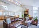 Living Room-Shag Bark 6