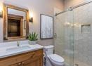 Hall Bathroom-Warbler 10