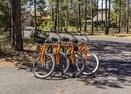 Bikes-Stag Lane 4