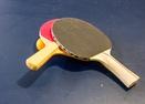 Ping Pong Table in Garage-Filbert 19