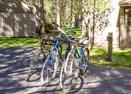 Bikes-Meadow Hse Cndo 5