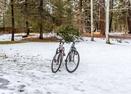 Bikes-Sharp Place 55872