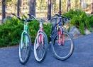 Bikes-Malheur 10