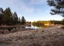 Aspen Lake-Bachelor 5