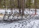 Jackpine-10-bikes-Jackpine 10