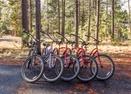 Bikes-Hummingbird 21