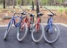 Bikes-Trailmere Circle 56294