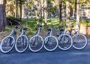 Bikes-Gannet 15