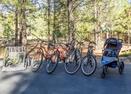 Bikes-Sandhill 1