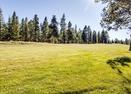 Woodlands Golf Course-Red Cedar 16