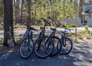 Bikes-Redwood 7