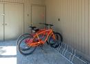 Bikes-Juniper 16