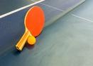 Ping Pong -Puma Lane 9