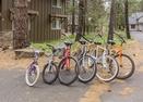Bikes-Conifer 7