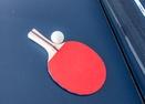 Ping Pong in Garage-Fifteenth Tee 1