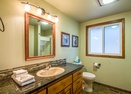 Downstairs Bathroom -Grizzly 6