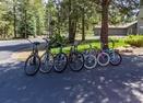 Bikes-Yellow Pine 37