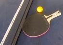 Ping Pong In Garage-Pine Ridge 6