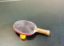 Ping Pong in Garage-Lassen 8