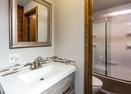 Downstairs Bathroom -Indian 17