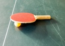 Ping Pong Table in Garage-Cypress 10