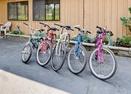 Bikes-Pioneer 8
