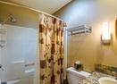 Downstairs Bathroom-Meadow Hse Cndo 8