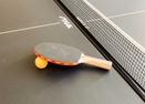 Ping Pong Table in Garage-Doral Lane 6