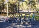Bikes-Red Cedar 16