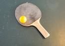 Ping Pong in Garage-Rogue 19