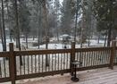 View Off Deck in Winter-Kinglet 42